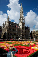 Flower Carpet - Brussels Grand Place #07