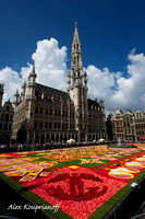 Flower Carpet - Brussels Grand Place #06